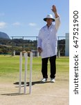 cricket umpire signaling bye...   Shutterstock . vector #647521900