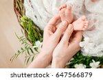 baby feet in mother hands. tiny ... | Shutterstock . vector #647566879