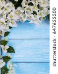 white bougainvillea flowers | Shutterstock . vector #647633200