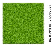 green grass square background.... | Shutterstock .eps vector #647703784