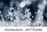Water Splash Effect Z5 High Speed Water Photography Shallow Depth of Field Background