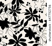 vector seamless dry floral... | Shutterstock .eps vector #647752756