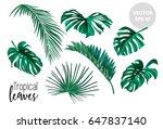 set of realistic vector... | Shutterstock .eps vector #647837140