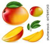 mango set. full editable ... | Shutterstock .eps vector #647849143