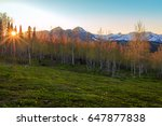 spring sunset with aspens in... | Shutterstock . vector #647877838