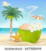 coconut water drink on a sea... | Shutterstock .eps vector #647980444