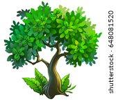 cartoon illustration of a tree... | Shutterstock .eps vector #648081520