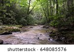 Muddy Mountain Stream With Moss ...