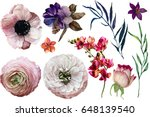 set with beautiful flowers | Shutterstock . vector #648139540