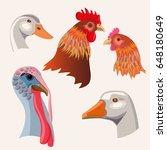 Farm Birds Heads  Duck  Goose ...