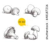 hand drawn sketch style fresh...   Shutterstock .eps vector #648187216