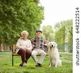 happy elderly couple with a dog ... | Shutterstock . vector #648222514