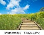 road of flower garden | Shutterstock . vector #648283390