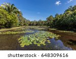 fresh water lake at cairns... | Shutterstock . vector #648309616