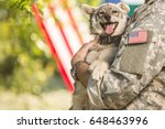 Stock photo soldier with military dog outdoors on a sunny day with american flag on the background 648463996