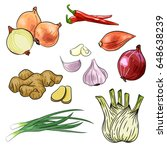 onion  chilly  garlic  ginger ... | Shutterstock .eps vector #648638239
