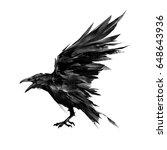 Drawn Flying Bird Raven On...