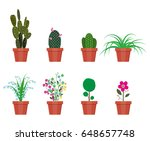 various plants in flower pot.... | Shutterstock .eps vector #648657748