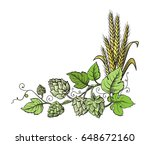 wheat and beer hops branch with ... | Shutterstock .eps vector #648672160