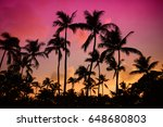 palm trees silhouette on sunset ... | Shutterstock . vector #648680803
