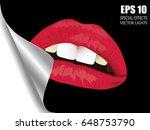 the woman's lips. lush lips...   Shutterstock .eps vector #648753790