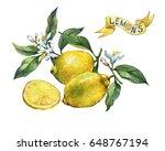 fresh citrus fruit lemon on a... | Shutterstock . vector #648767194