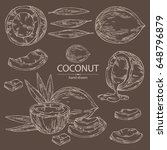collection of coconut  coconut  ... | Shutterstock .eps vector #648796879