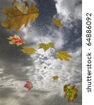 The Falling Autumn Leaves And...