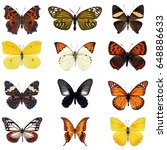 collection of colorful...   Shutterstock . vector #648886633