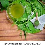 tea .gumnema inodorum  lour. ... | Shutterstock . vector #649056760