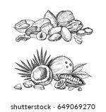 nuts mix vector isolated on... | Shutterstock .eps vector #649069270