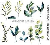 set of watercolor eucalyptus... | Shutterstock . vector #649188298