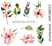 set of watercolor pink anemone... | Shutterstock . vector #649188313