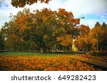 trees with yellow foliage in...   Shutterstock . vector #649282423