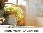 flower pots in the garden | Shutterstock . vector #649321108