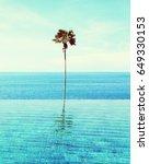 infiniti pool | Shutterstock . vector #649330153