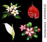 Flowers Of Exotic Garden On...
