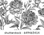 peonies seamless floral pattern.... | Shutterstock . vector #649465414