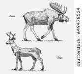 moose or eurasian elk and stag...   Shutterstock .eps vector #649478524