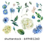 set of vintage watercolor roses ... | Shutterstock . vector #649481260