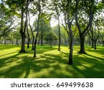 greenery park | Shutterstock . vector #649499638