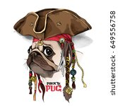 portrait of a pug in pirate hat ... | Shutterstock .eps vector #649556758