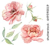 Stock photo watercolor flowers set it s perfect for greeting cards wedding invitation wedding design 649590019