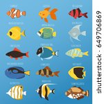 exotic tropical fish race... | Shutterstock .eps vector #649706869