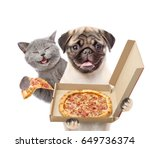 Stock photo happy cat and pizza dealer puppy with open boxes isolated on white background 649736374