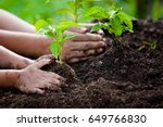 child and parent hand planting... | Shutterstock . vector #649766830