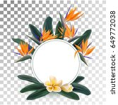 plumeria and strelitzia reginae ... | Shutterstock .eps vector #649772038