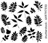vector set of leaves... | Shutterstock .eps vector #649797550