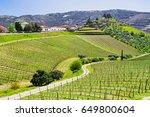douro valley. vineyards and...   Shutterstock . vector #649800604