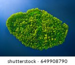 Top view of a small green island in the blue sea, ocean, river, lake. The weather is sunny.